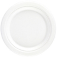 Bagasse  Round Plate 25.4cm White