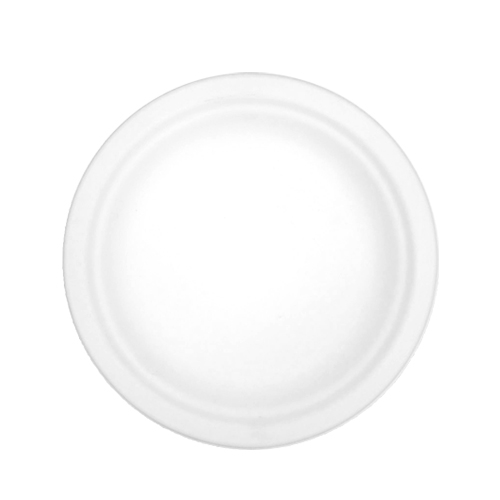 """Bagasse Compostable Plate 9.65"""" Natural Cream"""