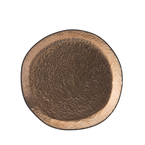 Utopia Midas Plate 26cm Copper