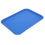 Polycarbonate Rectangular Tray 410x300mm Blue